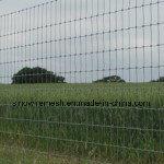Sailin hochfester Stahl-Bereich-Zaun