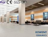 azulejo fino de la porcelana de 600X1200m m 4.8m m para el cuarto de baño