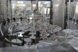 Gekohlte Sodawasser-Produktions-Pflanze beenden