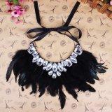 De Juwelen van de Halsband van de Kraag van de Verklaring van de Veer van de Toebehoren van de Manier van de Winter van vrouwen