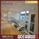 Escaliers en bois en acier de pêche à la traîne en verre portative (DMS-2073)