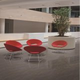 24X24 Foshan material de construcción de porcelana pulida piso de azulejos (F603P)