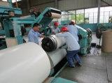 CGCC Grad vorgestrichene galvanisierte Stahlspule