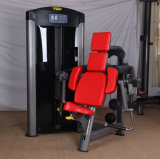 Mini machine de la gymnastique Equipment/Strength de formation de la gymnastique Equipment/Biceps