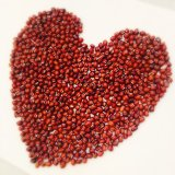 Wholesaleのための中国Small Red Beans