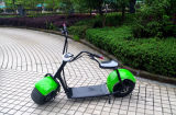 Самокат самоката 1000W Citycoco Китая Yongkang популярный электрический (JY-ES005)