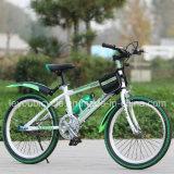 싼 고품질은 자전거를 탄다 산 MTB 자전거 (LY-A-21)를