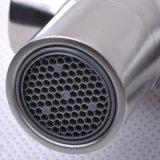 Populaire choisir le robinet Ab111 de cuisine de traitement