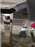 Uma cadeira do retângulo seis com a tabela de jantar de vidro ajustou-se para a mobília