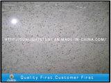 Dalles de granit blanc Cachemire pour comptoirs de cuisine / étagères de salle de bain