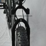 20インチ500Wの脂肪質のタイヤEのバイクRseb-507