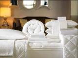 Comforter spesso comodo Pelle-Amichevole (DPFB8096)