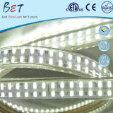 SMD5050 Dimmable 120LEDs 12W 높은 루멘 빛 지구