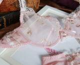Сексуальный прозрачный бюстгальтер установил с красивейшей вышивкой (FPY308)