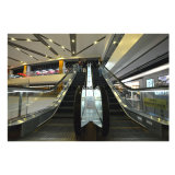 Vvvf Laufwerk-Rolltreppe mit 35 Grad