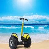 19 pollici due rotelle che equilibrano il motorino elettrico del vagone per il trasporto dei lingotti diritto
