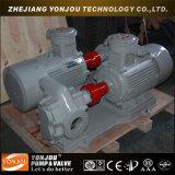 Pétrole chaud de KCB 2cy, pompe à engrenages hydraulique commerciale d'huile de graissage