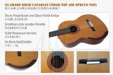 Guitarra clássica de Smallman do corpo do Rosewood de México do tipo de Aiersi