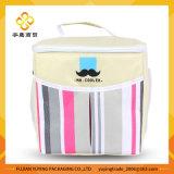 ピクニックトートバックのオルガナイザーのクーラー袋(YYCB041)
