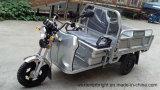 EEC/Ec/Coc/Ce 48V 1000Wの電気貨物三輪車中国製