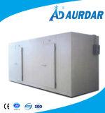 Qualitäts-Fisch-Speicher-Kühlraum