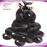 100%加工されていないボディ波のバージンの毛の織り方のブラジルの人間の毛髪