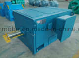 Aire-Agua de la serie 6kv/10kvyks que refresca el motor de CA trifásico de alto voltaje Yks5601-10-400kw