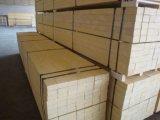 Panneau en bois de contre-plaqué de LVL de peuplier avec le meilleur prix