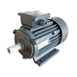 Mej. Series Three-Phase Asynchronous Motor met de Norm van CEI