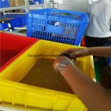 Presión de la agua caliente que alza la bomba de circulación de Wilo