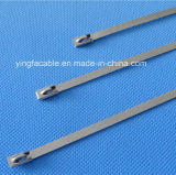 Cinta plástica revestida cheia do aço 316 inoxidável (farpa da escada)