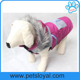 2016新しい項目冬の飼い犬はコートに着せる