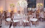 Stoel van het Roestvrij staal van de Troon van het Huwelijk van de stoel de Witte, Gouden Barokke Moderne het Dineren Stoel