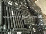 Rete metallica esagonale rivestita del PVC e galvanizzata
