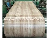 L'impression de couleur du bois de configuration a enduit la bobine d'une première couche de peinture en acier