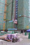 Grue de levage d'élévateur de construction