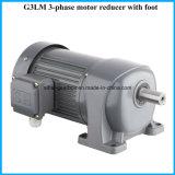 G3シャフト18mmの直巻電動機の螺旋形連動させられたモーター