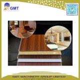 Espulsione esterna di plastica del comitato di parete del PVC Wood+Composite di WPC che fa macchina