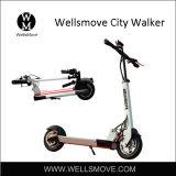 普及した都市個人的な交通機関の手段のスクーターの二重モーター