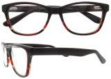 Qualitäts-Azetat konzipierte optisches Glas Eyewear