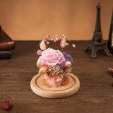 발렌타인 선물을%s 유리에 있는 보존한 꽃