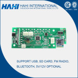 5V/12V USB BR Card MP3 Decoder Board met Bluetooth (G001)