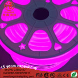 Lumière de signe à corde en néon flexible fluorescente IP65 à 360 degrés pour décoration