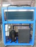 Refrigerador de água de refrigeração ar de circulação do controle de temperatura constante