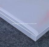 Disegno di plastica di promozione dei contenitori di PVC dell'animale domestico pp del fornitore della Cina