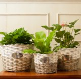 (BC-WF1026) respetuoso del medio ambiente natural hecho a mano del sauce cesta de la flor