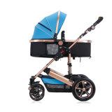 Justierbarer Großhandelsgriff-faltbarer Baby-Spaziergänger