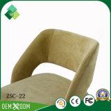 庭(ZSC-22)のためのアメリカの簡単な様式のAshtreeの旧式な椅子