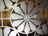 Il divisorio decorativo del metallo dell'acciaio inossidabile seleziona il divisorio