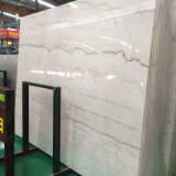 Lajes de mármore cinzentas do projeto novo para as telhas da parede de Carrara/bancadas brancas (MS-6537)